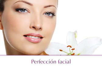 perfeccion facial